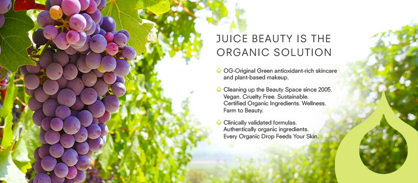 About Juice Beauty Homepage