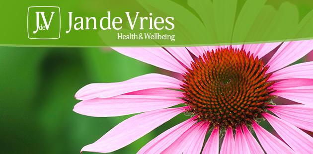 About Jan de Vries Homepage