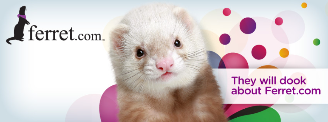 About Ferret.com Homepage