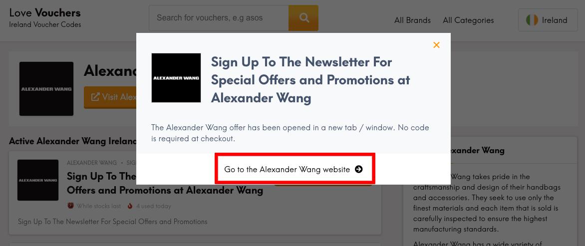 Alexander Wang IE Get Code