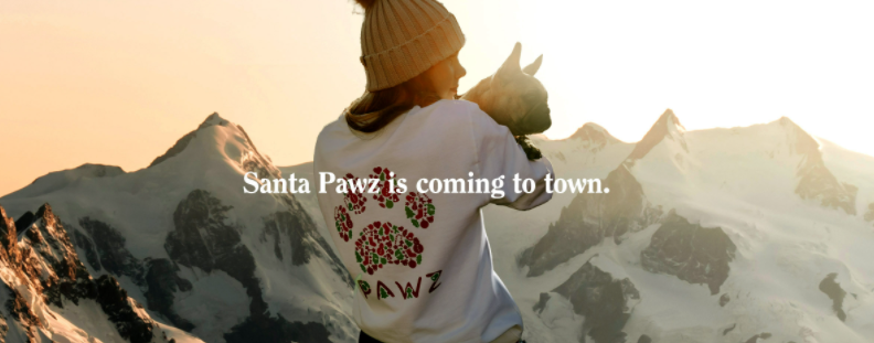 About Pawz Homepage