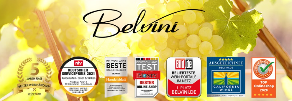 About Belvini Homepage
