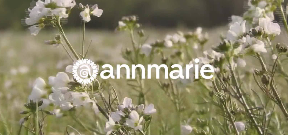 About Annmarie homepage