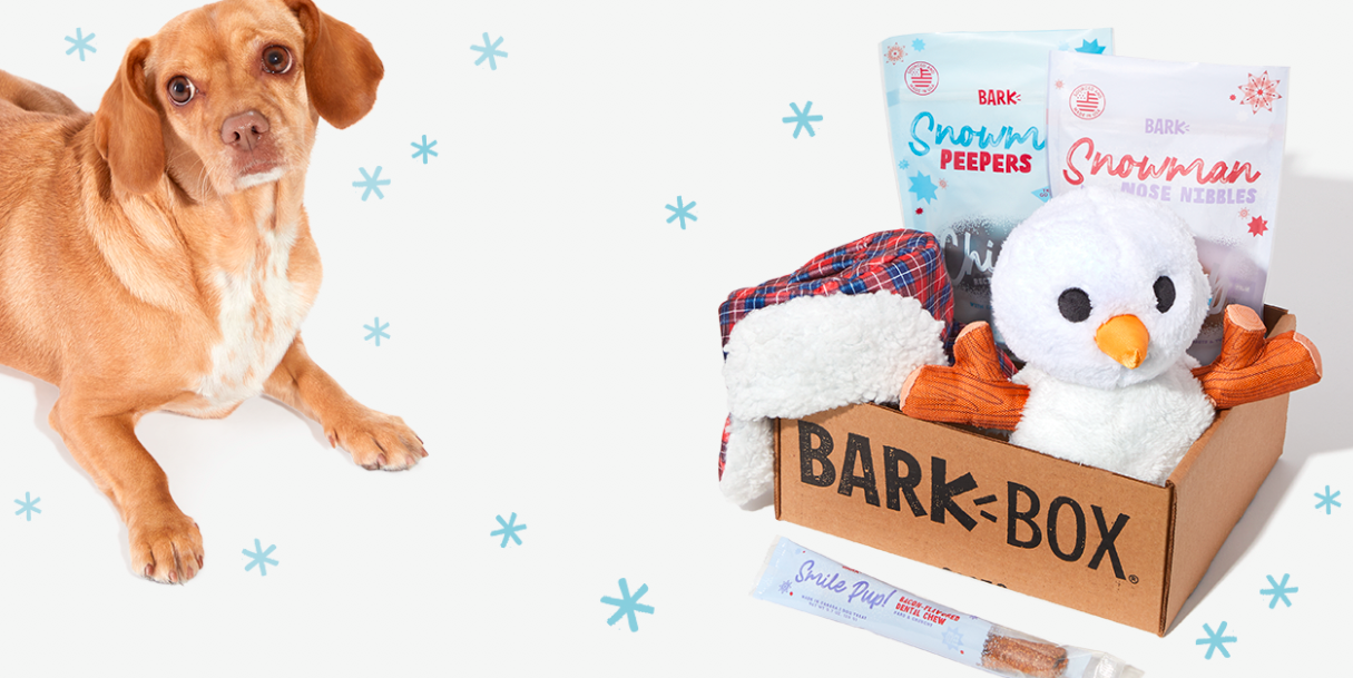 About BarkBox Homepage