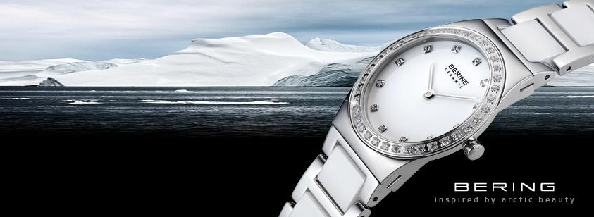 About Bering Homepage