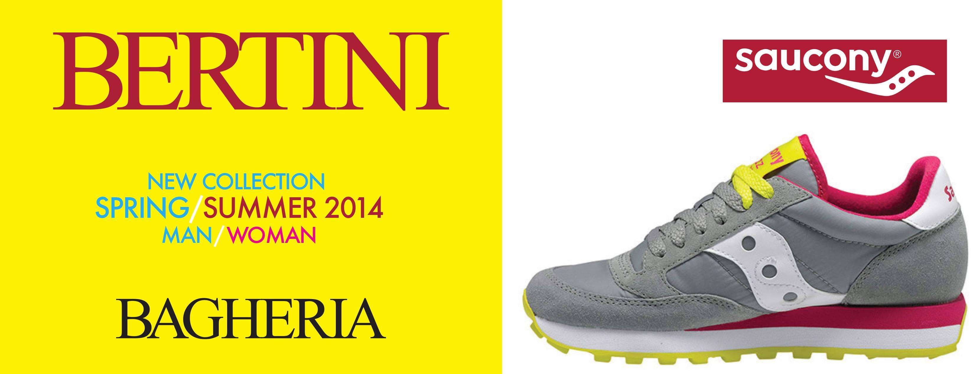 About Bertini Homepage