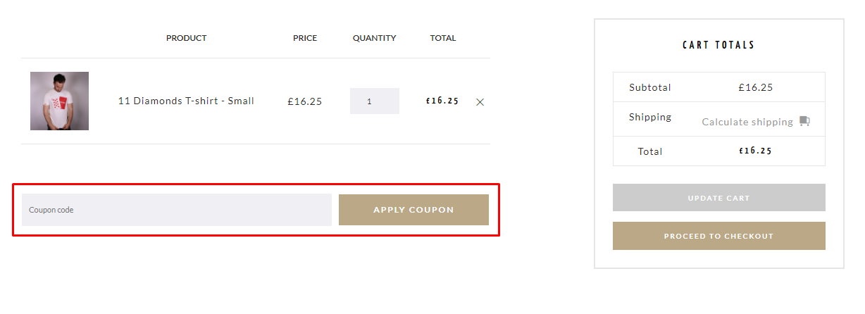 How do I use my Snide coupon code?