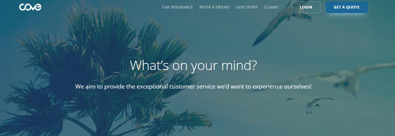 Cove Insurance Image