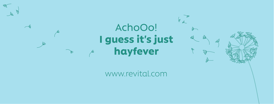 About Revital Homepage