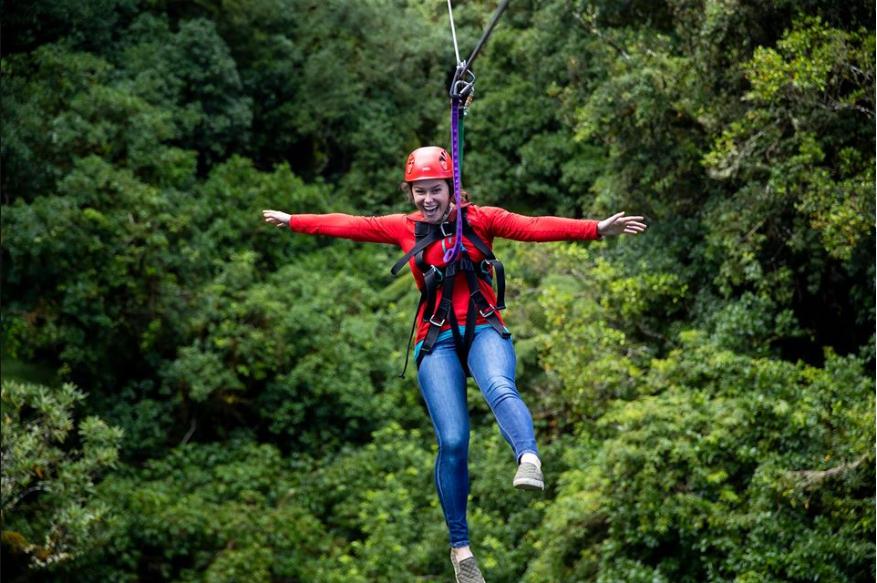 About Rotorua Canopy ToursHomepage