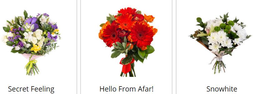 About Cyber-Florist Sales