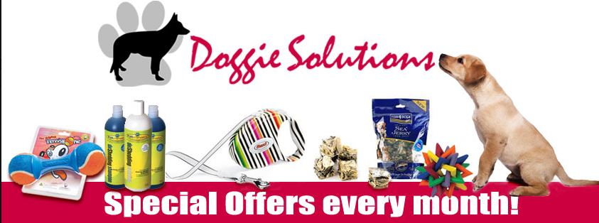 About Doggie Solutions Homepage