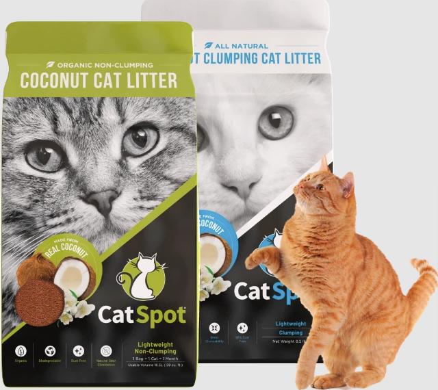 CatSpot about us