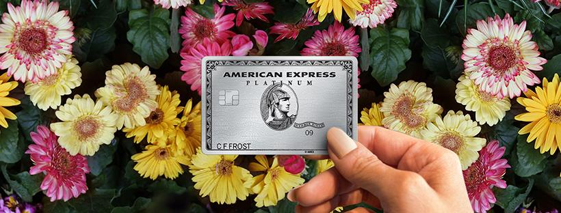 About American Express Homepage
