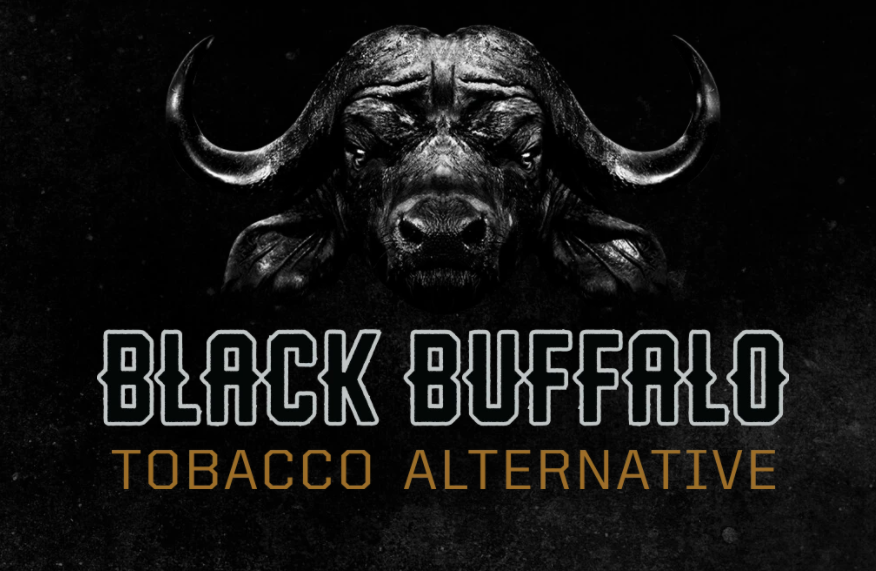 About Black Buffalo Homepage