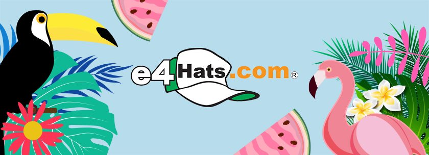 About e4Hats Homepage