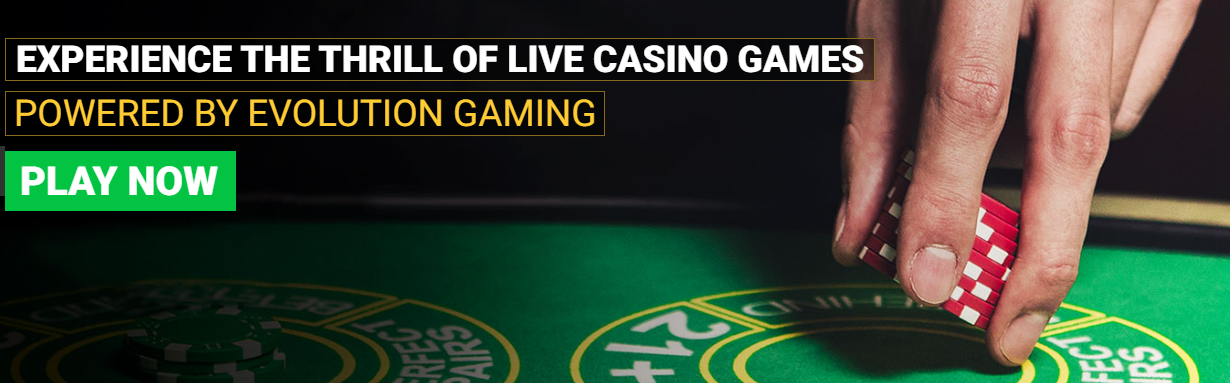 About Mega Casino Homepage