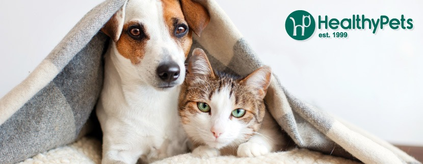 About HealthyPets Homepage