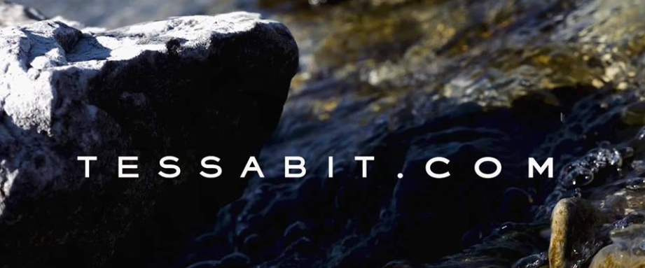 About Tessabit Homepage