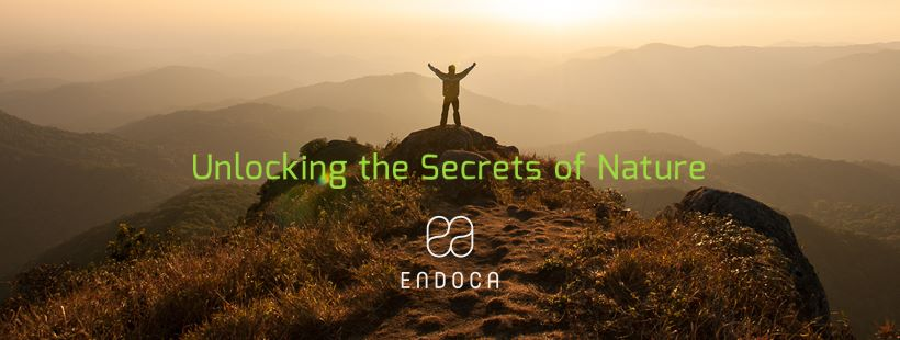 About Endoca Homepage