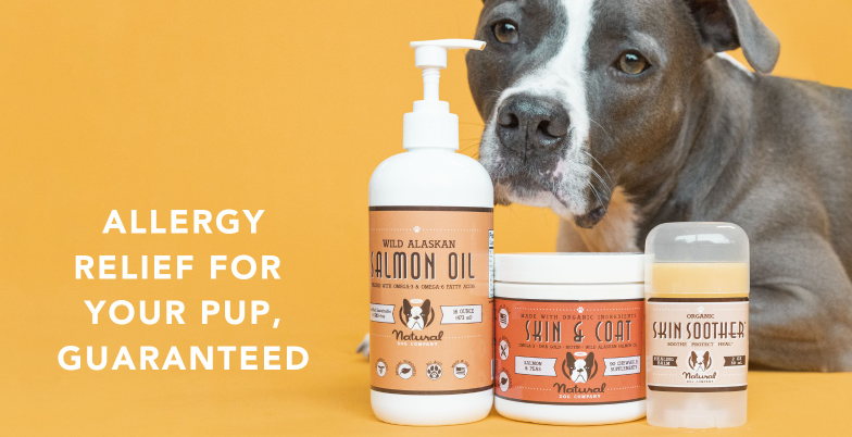 About Natural Dog Company Homepage