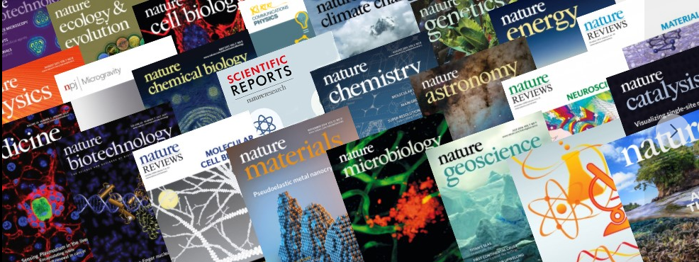 About Nature Research Homepage