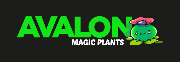 About Avalon magic plants Homepage