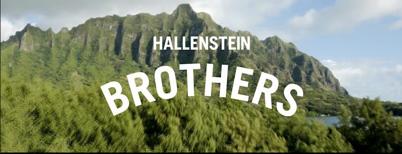 About Hallenstein Brothers Homepage