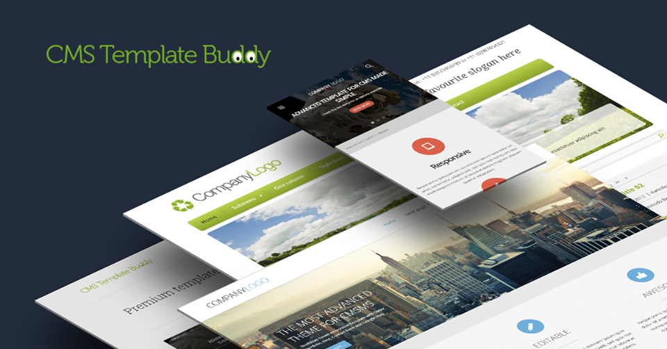 About CMS Template Buddy Homepage