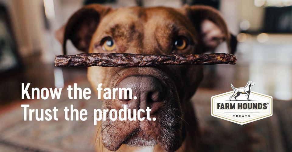 About Farm Hounds Homepage