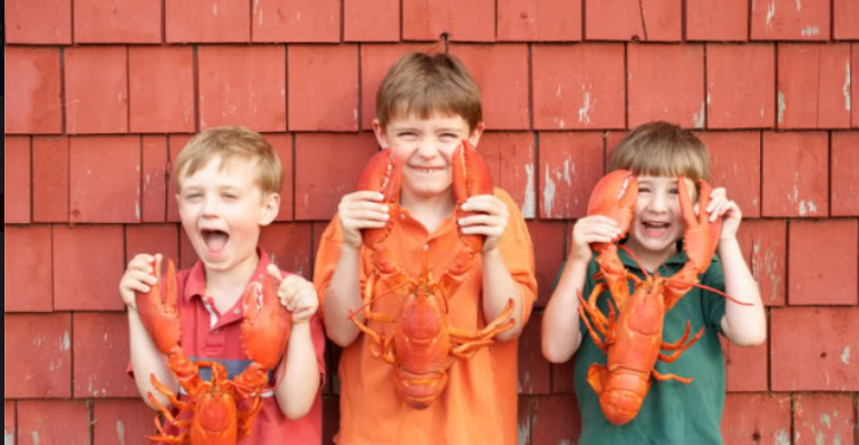 About LobsterAnywhere.com Homepage