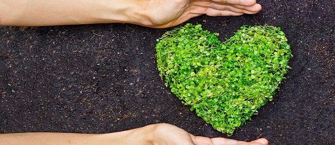Argos & The Environment
