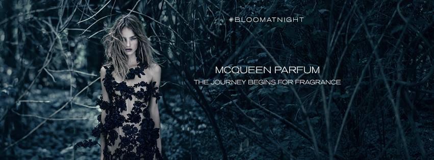 About Alexander McQueen Homepage