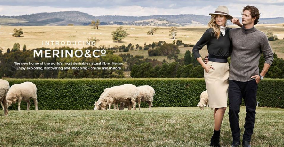 About Merino & Co Homepage