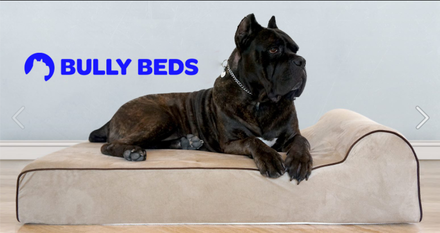 About Bully Beds Homepage