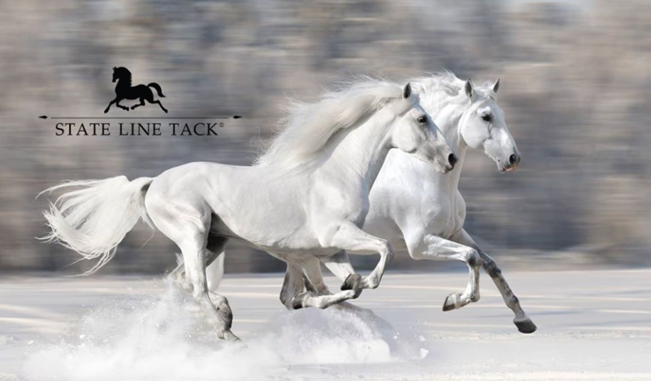About State Line Tack Homepage