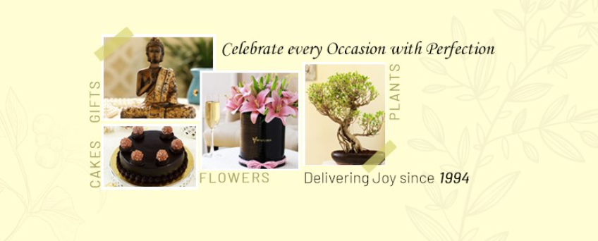 About Ferns N Petals Homepage