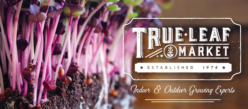 About True Leaf Market Homepage