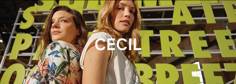 About CECIL homepage