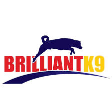 BrilliantK9