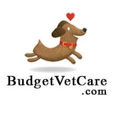 Budgetvetcare logo