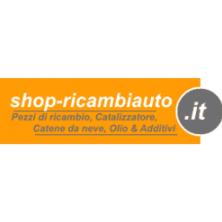 Shop-ricambiauto.it