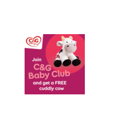 Get a Free Toy Cow