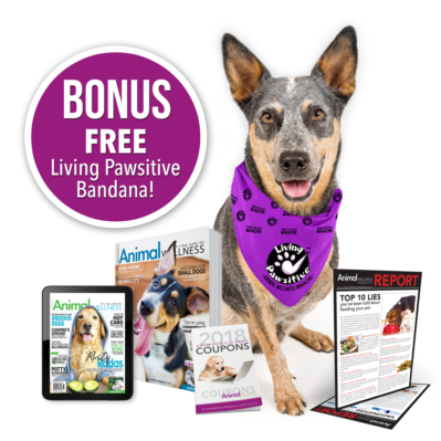 Free Animal Wellness Magazine subscription